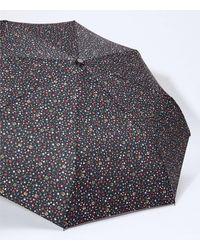 LOFT Vine Umbrella - Black