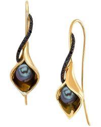 Lord + Taylor Black Oval Freshwater Pearl - Metallic