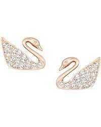 Swarovski - Swan Crystal Stud Earrings - Lyst