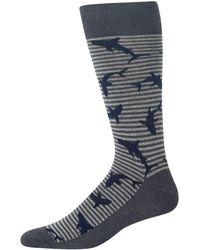 Hot Sox - Men's Sharks Crew Socks - Lyst