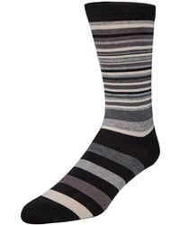 Cole Haan - Stripe Crew Socks - Lyst