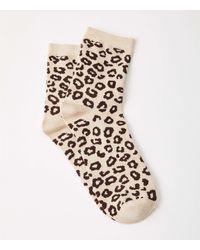 Lou & Grey Cheetah Print Socks - Multicolor
