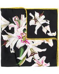 Dolce & Gabbana Foulard - Multicolor