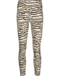 DKNY Zebra-print Stretch leggings - Black