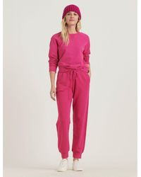Lucky Brand Solid Jogger Pant - Pink