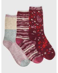 Lucky Brand 3pack Stripped Rib Socks - Red