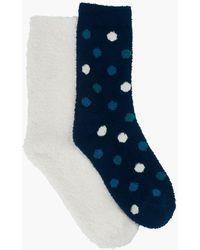 Lucky Brand 2pack Polka Dot Cozy Socks - Blue