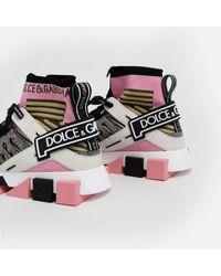 Dolce & Gabbana Multicolor Sorrento Sneakers