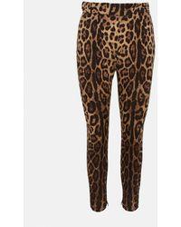 Dolce & Gabbana Leopard-print Pants - Brown