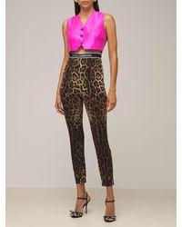 Dolce & Gabbana Leopard シャルムーズレギンス - ブラウン