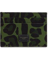 Dolce & Gabbana Кредитница Из Кожи С Принтом - Зеленый