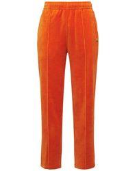 "Lacoste Kordhose "" L!ve"" - Orange"