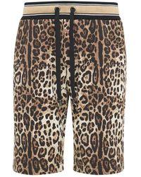Dolce & Gabbana Leopard コットンハーフパンツ - マルチカラー