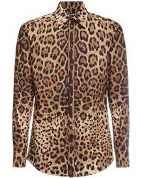 Dolce & Gabbana Рубашка Из Поплин С Леопардовым Принтом - Коричневый