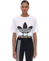 adidas Originals コットンジャージー クロップド長袖tシャツ - ホワイト