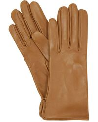 Mario Portolano Leather Gloves - Natural