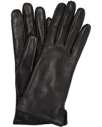 Mario Portolano Nappa Leather & Rabbit Gloves - Black