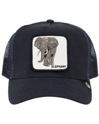 Goorin Bros Кепка Elephant - Синий