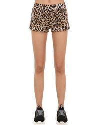 Moschino - Animal Printed Jersey Shorts - Lyst