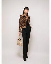 Dolce & Gabbana Пиджак Из Крепа С Леопардовым Принтом - Коричневый