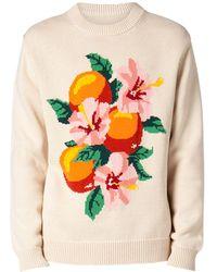 CASABLANCA Oranges コットンニットセーター - マルチカラー