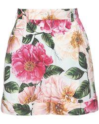 Dolce & Gabbana Camelia コットンポプリンショートパンツ - ピンク