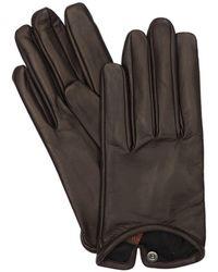 Mario Portolano Leather Gloves - Brown