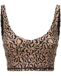The Upside Candice Leopard ブラトップ - ブラウン