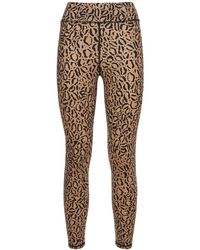 The Upside Leopard ハイウエストレギンス - ブラウン