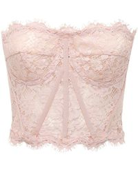 Dolce & Gabbana Lace Sheer Bustier Crop Top - Pink
