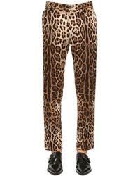 Dolce & Gabbana Pantalon En Coton Imprimé Léopard 17 Cm - Marron