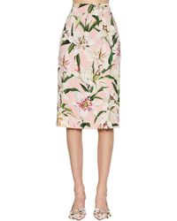 Dolce & Gabbana Printed Cady Stretch Pencil Skirt - Pink
