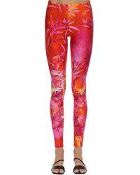 Versace Palm Print Leggings - Pink