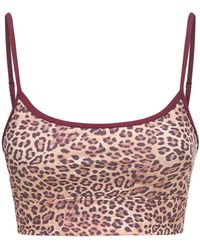 The Upside Leopard Natacha ブラトップ - マルチカラー
