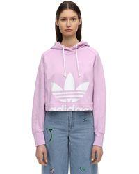 adidas Originals - Свитшот Из Хлопка С Капюшоном - Lyst