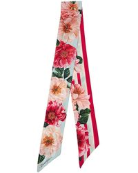Dolce & Gabbana Foulard En Twill De Soie Imprimée - Multicolore