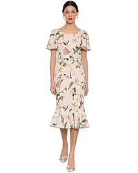 Dolce & Gabbana Lily-print Fluted Cady Dress - Black