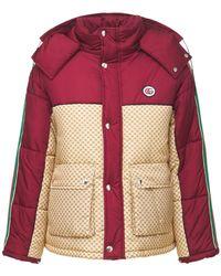 Gucci Куртка-бомбер Из-нейлона - Красный