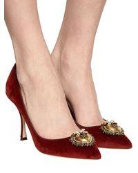 Dolce & Gabbana Бархатные Туфли 90mm - Многоцветный