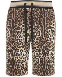 Dolce & Gabbana Baumwollshorts Mit Druck Und Logoplakette - Mehrfarbig