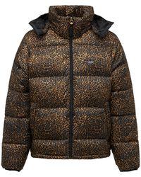 adidas Originals Куртка Из Нейлона С Принтом - Многоцветный