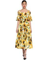 Dolce & Gabbana Платье Из Хлопкового Поплин - Желтый