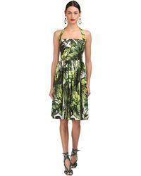 Dolce & Gabbana Palms Printed Cotton Poplin Midi Dress - Grün