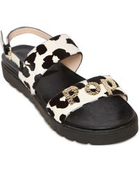 Alberto Guardiani - 10mm Pop! Printed Ponyskin Sandals - Lyst