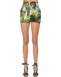 Dolce & Gabbana Jungle Printed Cotton Drill Shorts - Grün