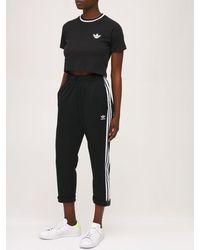 adidas Originals クロップドtシャツ - ブラック