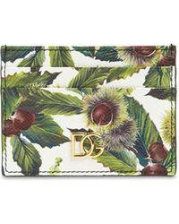 Dolce & Gabbana - Kartenhülle Aus Leder Mit Druck - Lyst