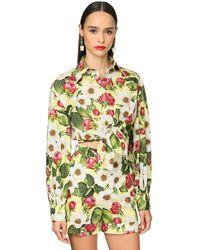 Dolce & Gabbana Рубашка Из Хлопка Поплин - Многоцветный