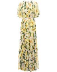 Dolce & Gabbana Camelia シルクジョーゼットドレス - イエロー