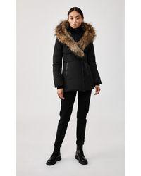 Mackage Adali Down Coat With Signature Natural Fur Collar In Black - Women